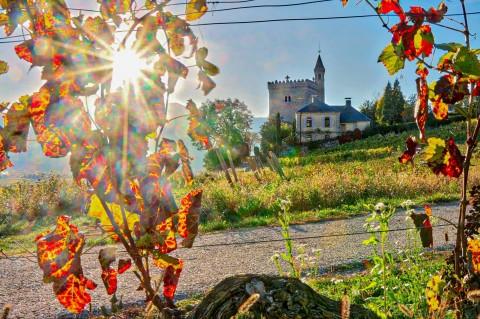 Chignin, Savoie, octobre 2017