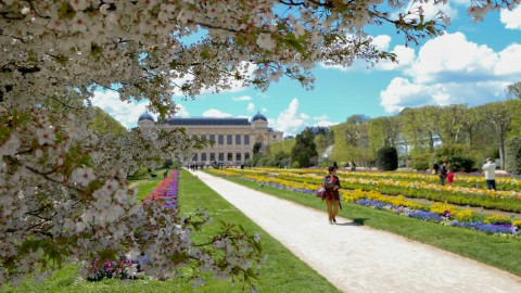 Jardin des plantes, Paris, avril 2016