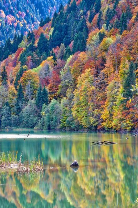 Lac de Vallon, Bellevaux, octobre 2019