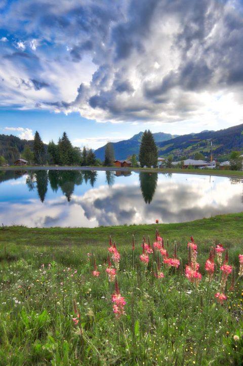 Lac des écoles, Les Gets, Juin 2020