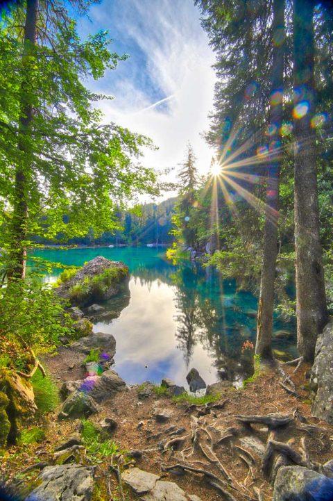 Lac Vert, Passy, Juillet 2020