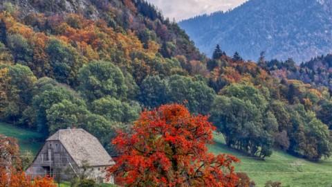 L'automne à Mieussy, octobre 2020