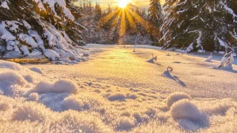 Ambiance magique d'hiver, Samoëns, janvier 2021