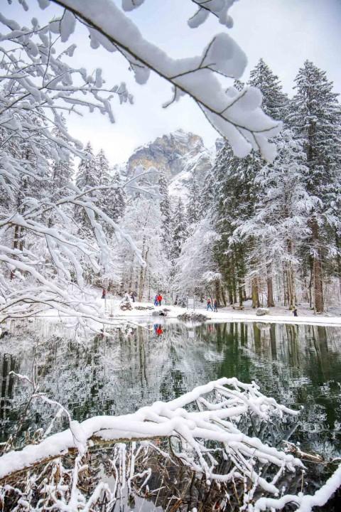 Merveilles d'hiver à Sixt-Fer-à-Cheval, décembre 2020